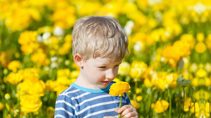 Игры, развивающие у ребенка чувство обоняния