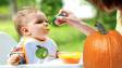 Овощной прикорм: как вводить в рацион ребенка