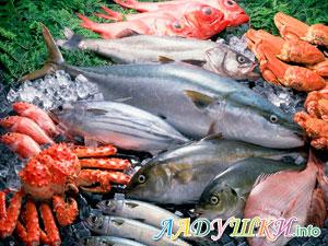 Морепродукты — лучший источник йода для организма
