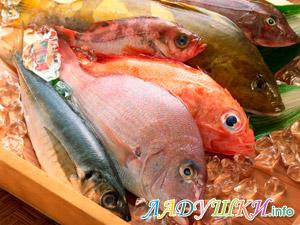 Морская рыба вводится в рацион ребенка первой